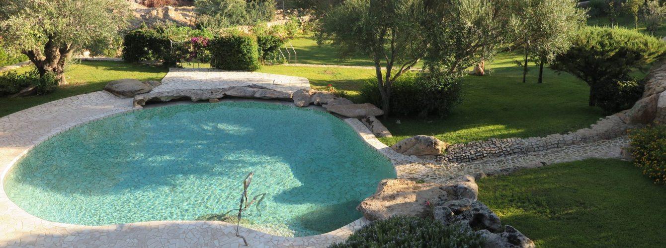 piscina naturale a forma libera